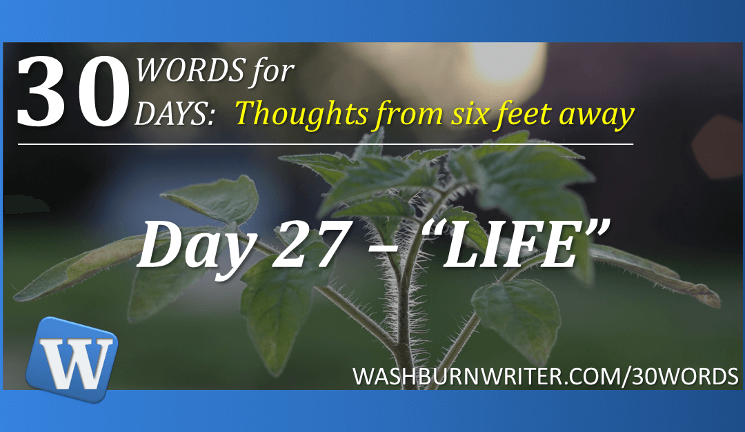 "Day 27 – ""LIFE"""